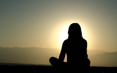 Article on why we meditate