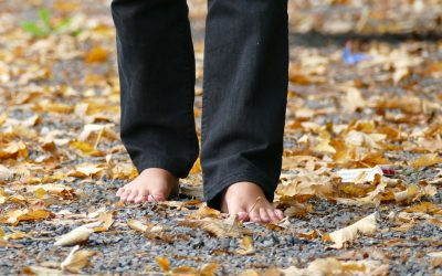 Walking meditation (16 min)